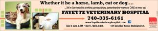 Compassionate, comprehensive veterinary care